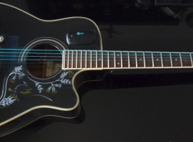 Eamonn\'s Work Horse Acoustic